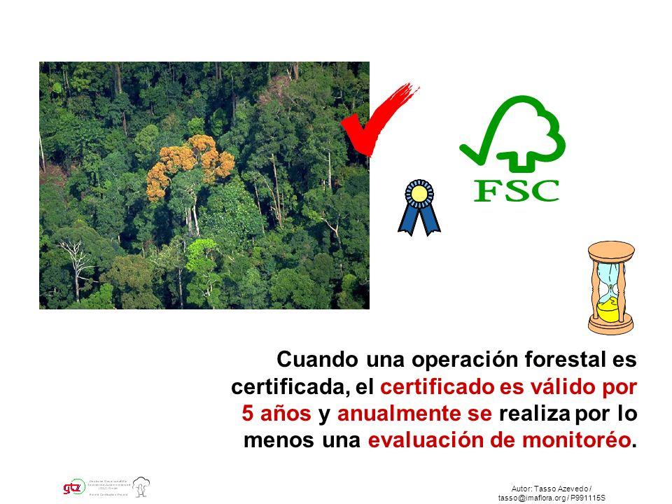 Autor: Tasso Azevedo / tasso@imaflora.org / P991115S Cuando una operación forestal es certificada, el certificado es válido por 5 años y anualmente se realiza por lo menos una evaluación de monitoréo.