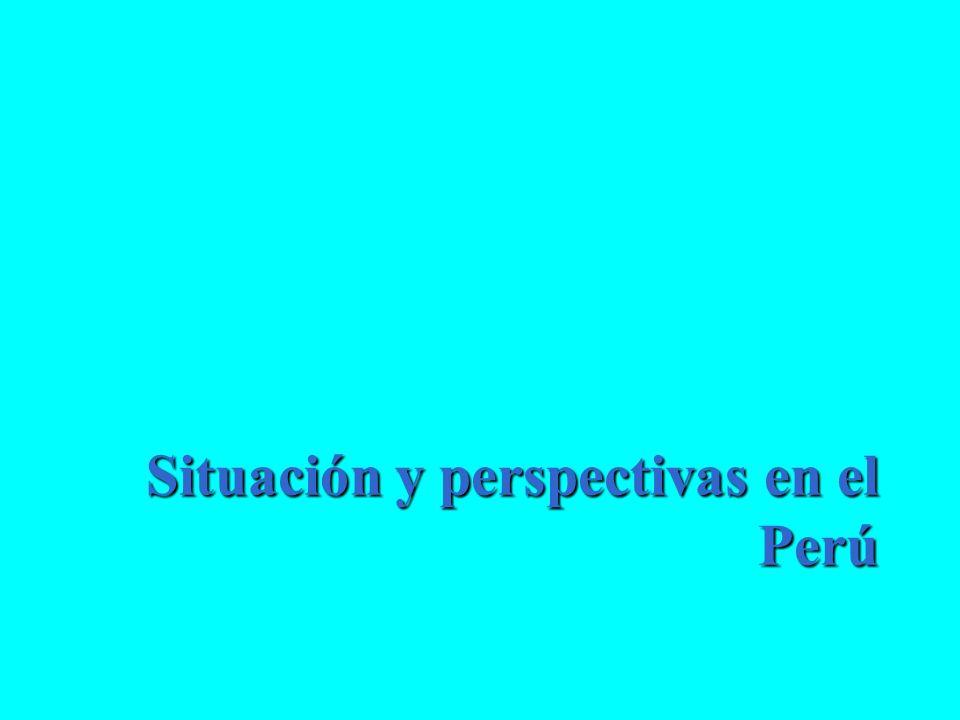 Situación y perspectivas en el Perú