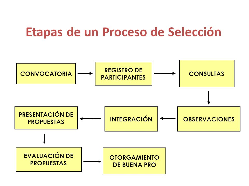 Licitación y Concurso Públicos Convocatoria Registro de Participantes Consultas Formulación : Mín.