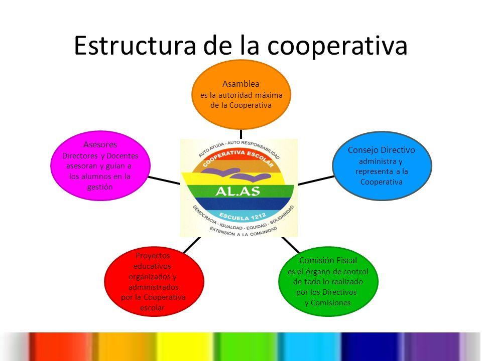 Estructura de la cooperativa Asesores Directores y Docentes asesoran y guían a los alumnos en la gestión Proyectos educativos organizados y administra