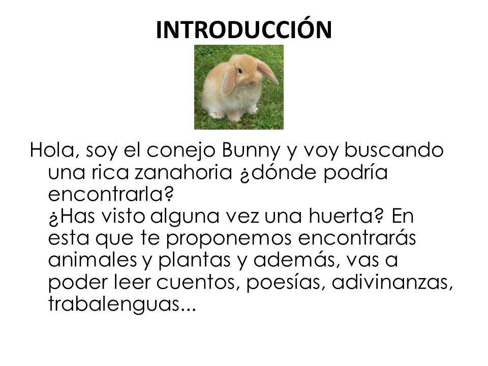 INTRODUCCIÓN Hola, soy el conejo Bunny y voy buscando una rica zanahoria ¿dónde podría encontrarla.