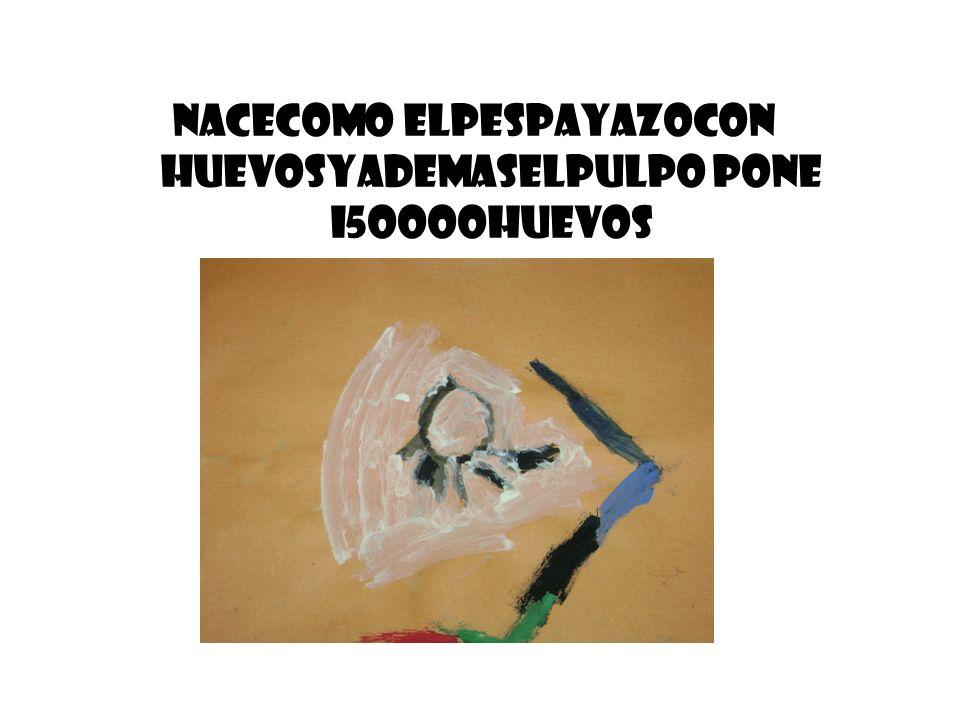 NACECOMO ELPESPAYAZOCON HUEVOSYADEMASELPULPO PONE I5OOOOHUEVOS