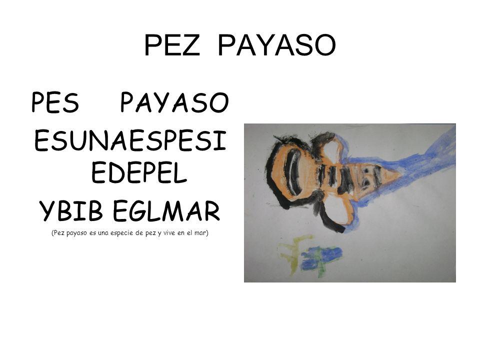 PEZ PAYASO PES PAYASO ESUNAESPESI EDEPEL YBIB EGLMAR (Pez payaso es una especie de pez y vive en el mar)