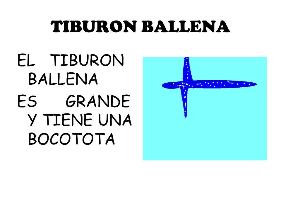 TIBURON BALLENA EL TIBURON BALLENA ES GRANDE Y TIENE UNA BOCOTOTA