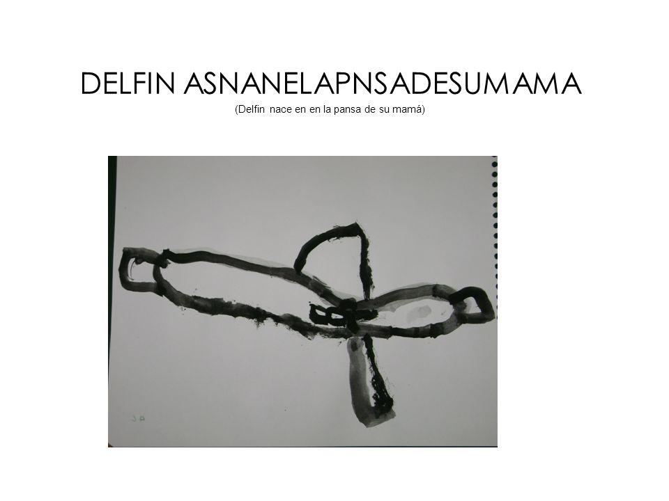DELFIN ASNANELAPNSADESUMAMA (Delfin nace en en la pansa de su mamá)