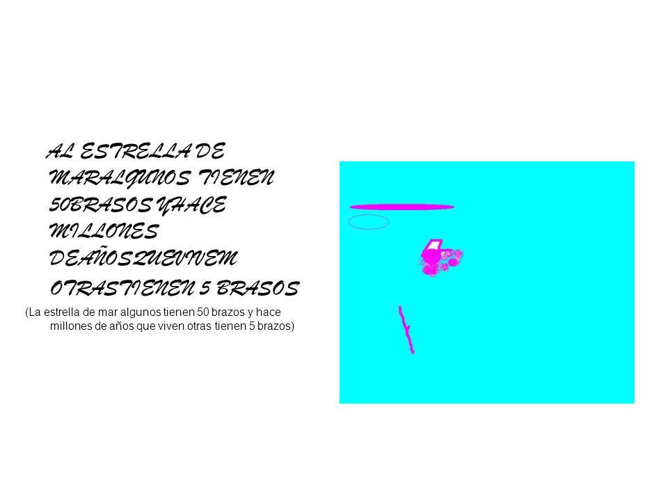 AL ESTRELLA DE MARALGUNOS TIENEN 50BRASOS YHACE MILLONES DEAÑOSQUEVIVEM OTRASTIENEN 5 BRASOS (La estrella de mar algunos tienen 50 brazos y hace millo