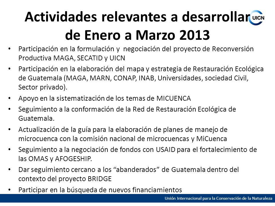 Unión Internacional para la Conservación de la Naturaleza Actividades relevantes a desarrollar de Enero a Marzo 2013 Participación en la formulación y