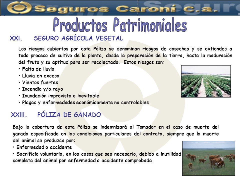 Los riesgos cubiertos por esta Póliza se denominan riesgos de cosechas y se extiendes a todo proceso de cultivo de la planta, desde la preparación de