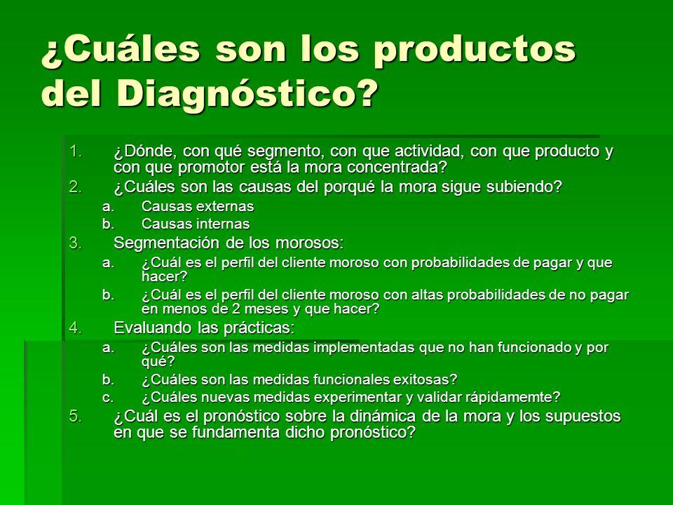 ¿Cuáles son los productos del Diagnóstico? 1.¿Dónde, con qué segmento, con que actividad, con que producto y con que promotor está la mora concentrada