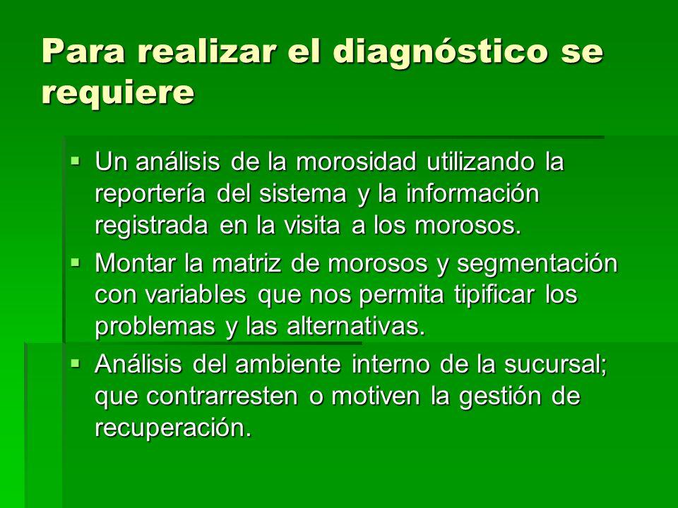 Para realizar el diagnóstico se requiere Un análisis de la morosidad utilizando la reportería del sistema y la información registrada en la visita a l