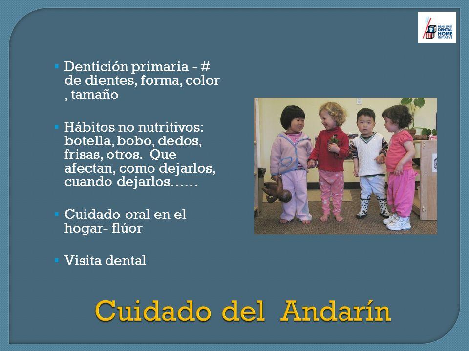 Dentición primaria - # de dientes, forma, color, tamaño Hábitos no nutritivos: botella, bobo, dedos, frisas, otros. Que afectan, como dejarlos, cuando