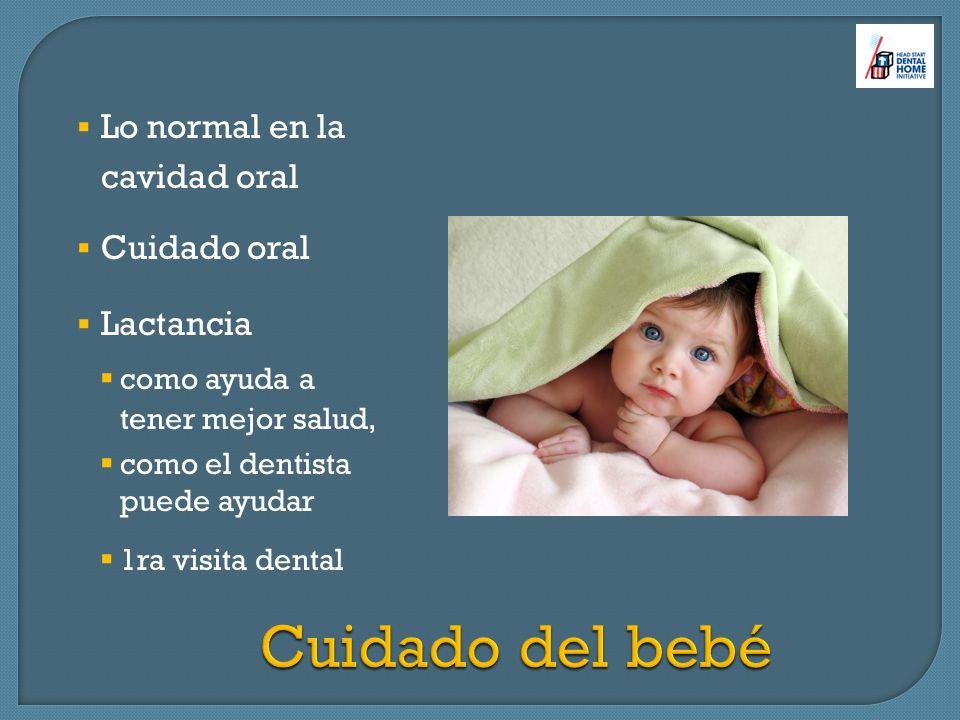 Lo normal en la cavidad oral Cuidado oral Lactancia como ayuda a tener mejor salud, como el dentista puede ayudar 1ra visita dental Cuidado del bebé C