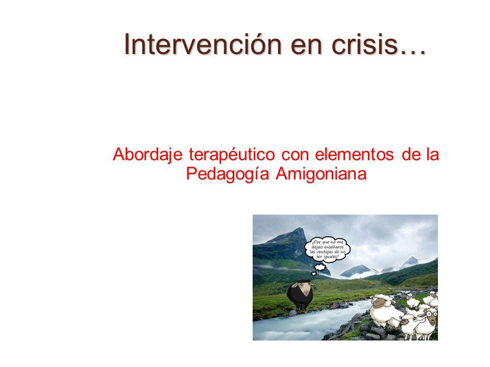 Intervención en crisis… Abordaje terapéutico con elementos de la Pedagogía Amigoniana