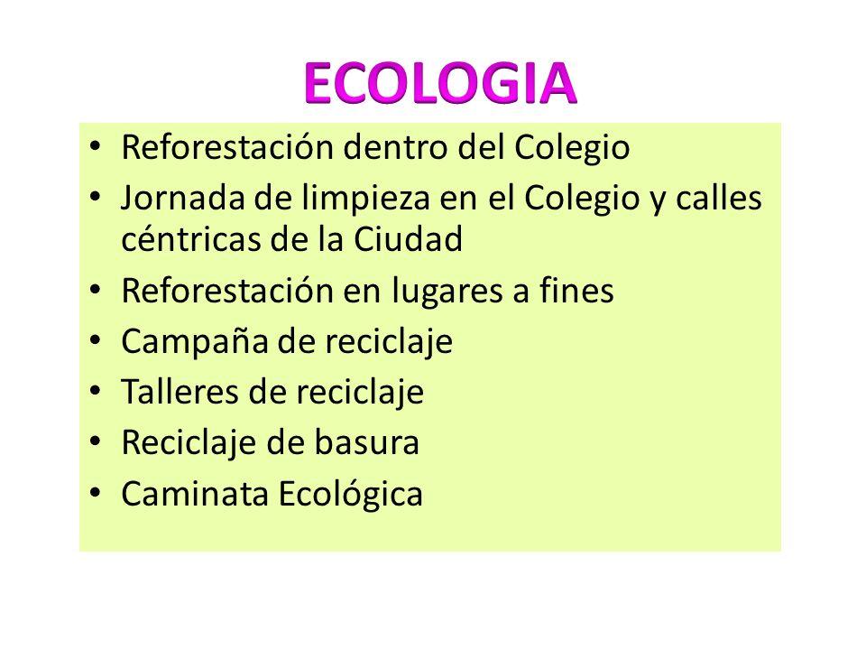 Reforestación dentro del Colegio Jornada de limpieza en el Colegio y calles céntricas de la Ciudad Reforestación en lugares a fines Campaña de recicla