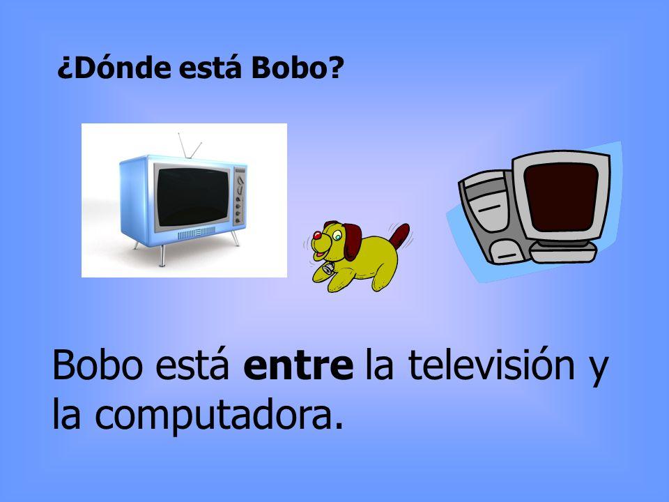 ¿Dónde está Bobo? Bobo está entre la televisión y la computadora.