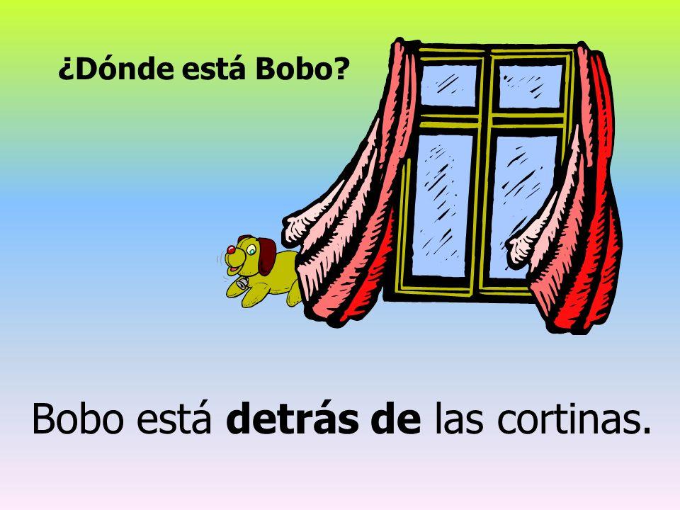 ¿Dónde está Bobo? Bobo está detrás de las cortinas.