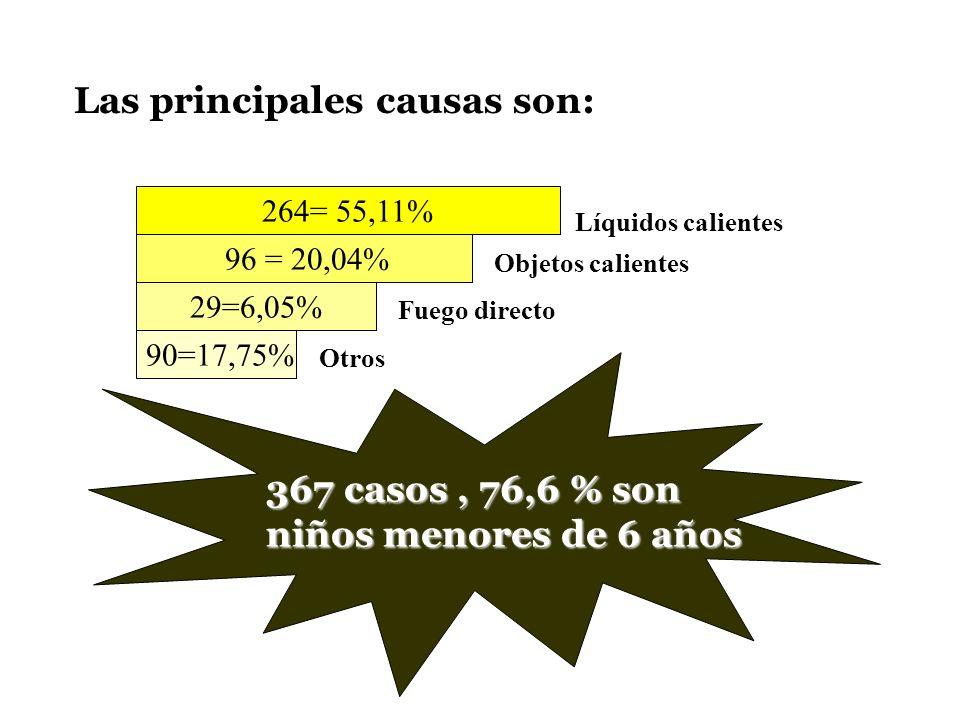 Las principales causas son: 264= 55,11% 96 = 20,04% 29=6,05% 90=17,75% Líquidos calientes Objetos calientes Fuego directo Otros 367 casos, 76,6 % son