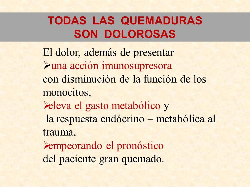 El dolor, además de presentar una acción imunosupresora con disminución de la función de los monocitos, eleva el gasto metabólico y la respuesta endóc