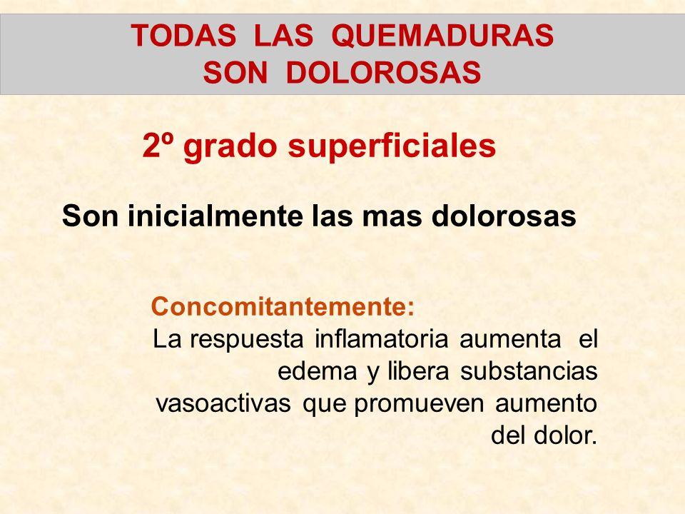 TODAS LAS QUEMADURAS SON DOLOROSAS 2º grado superficiales Son inicialmente las mas dolorosas Concomitantemente: La respuesta inflamatoria aumenta el e