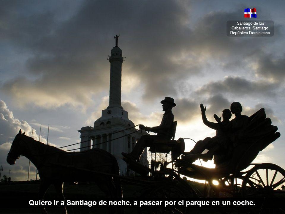 Santiago de los Caballeros. Santiago, República Dominicana. Es una doña gordita que le llamo la reina del carnaval.
