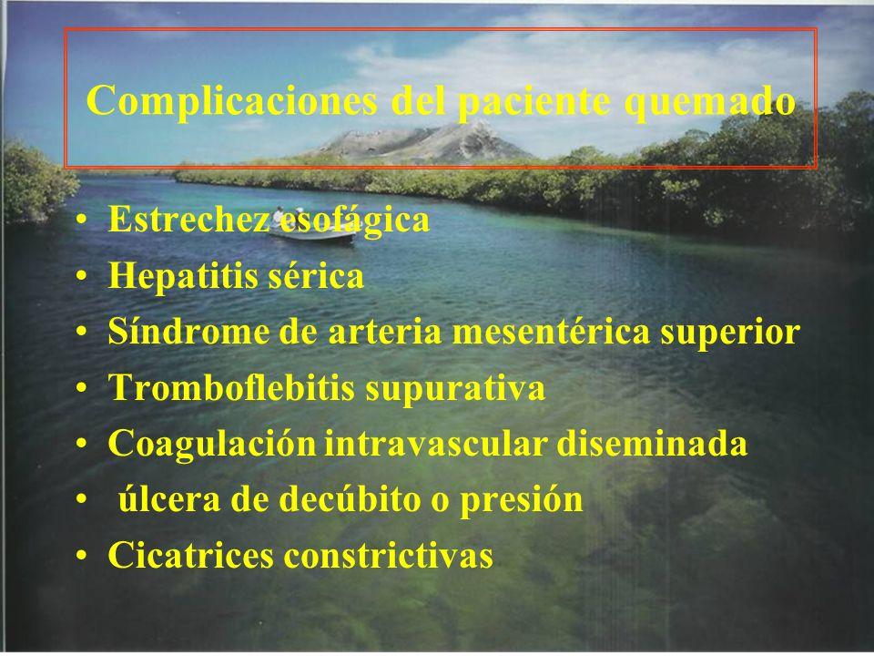 Complicaciones del paciente quemado Estrechez esofágica Hepatitis sérica Síndrome de arteria mesentérica superior Tromboflebitis supurativa Coagulació