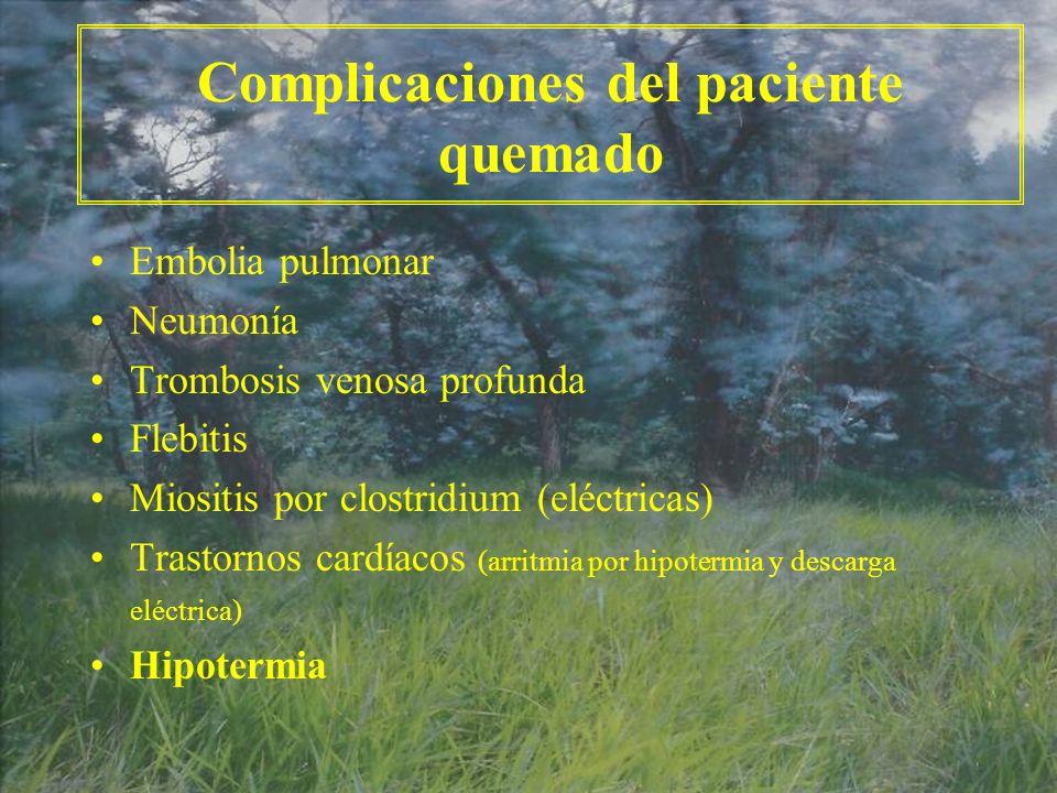 Complicaciones del paciente quemado Embolia pulmonar Neumonía Trombosis venosa profunda Flebitis Miositis por clostridium (eléctricas) Trastornos card