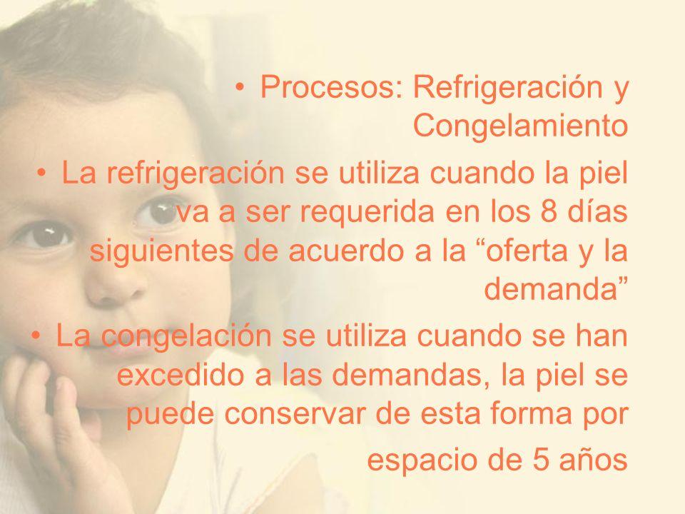 Procesos: Refrigeración y Congelamiento La refrigeración se utiliza cuando la piel va a ser requerida en los 8 días siguientes de acuerdo a la oferta