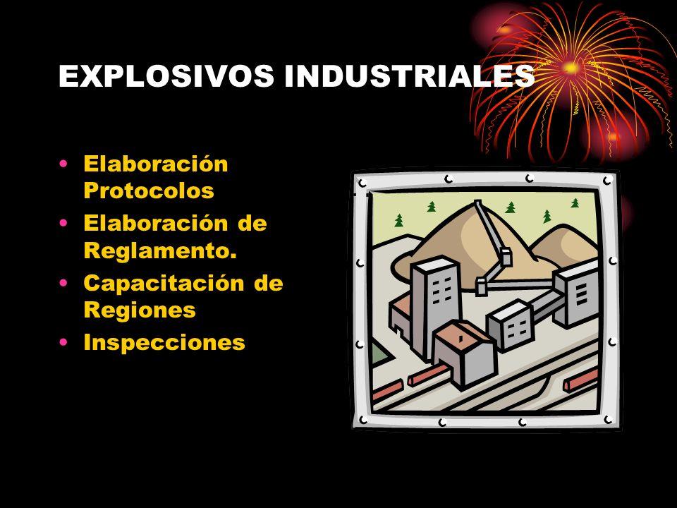EXPLOSIVOS INDUSTRIALES Elaboración Protocolos Elaboración de Reglamento. Capacitación de Regiones Inspecciones