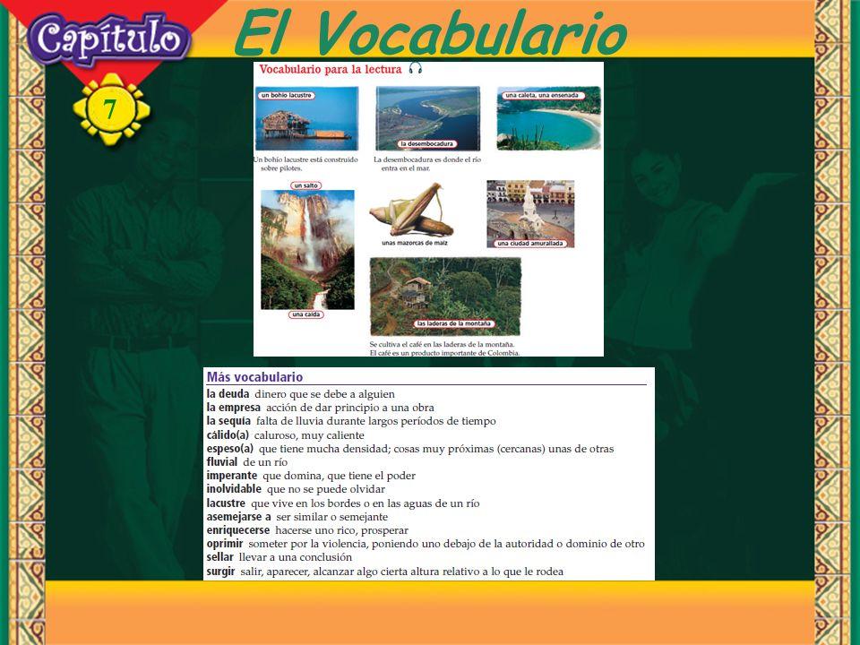 7 El Vocabulario
