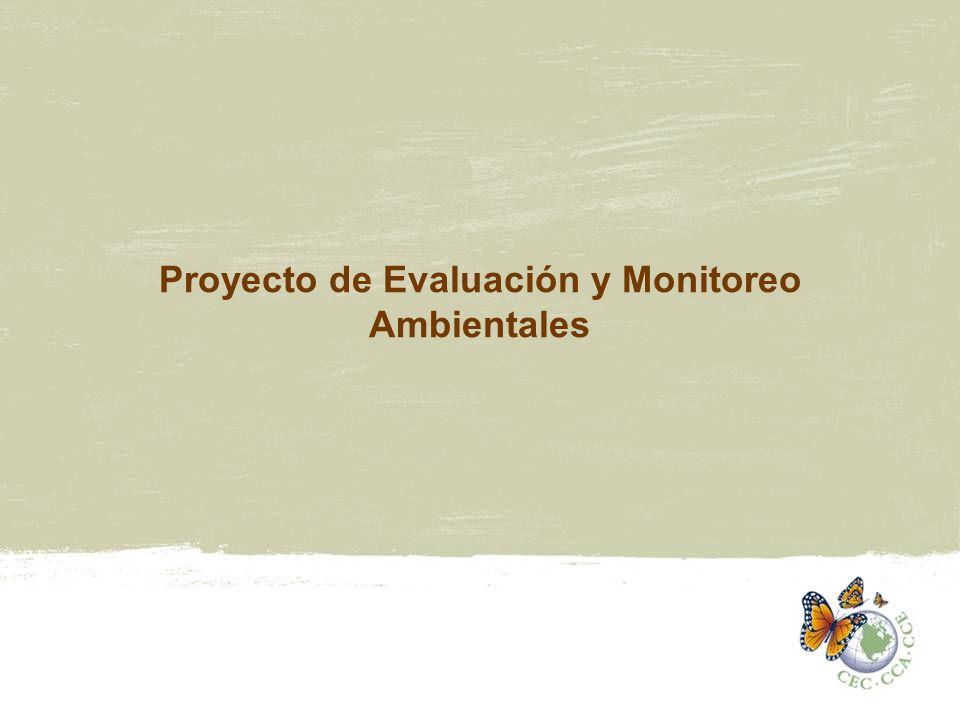 Estructura del Programa de EMA Dentro del marco de la Iniciativa de Manejo de Sustancias Químicas –Proyectos de MASQ y de EMA Áreas principales y enfoque 1.