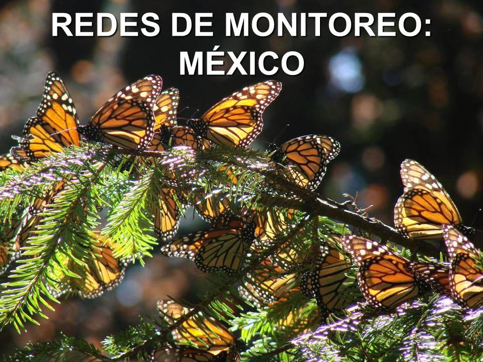 REDES DE MONITOREO: MÉXICO