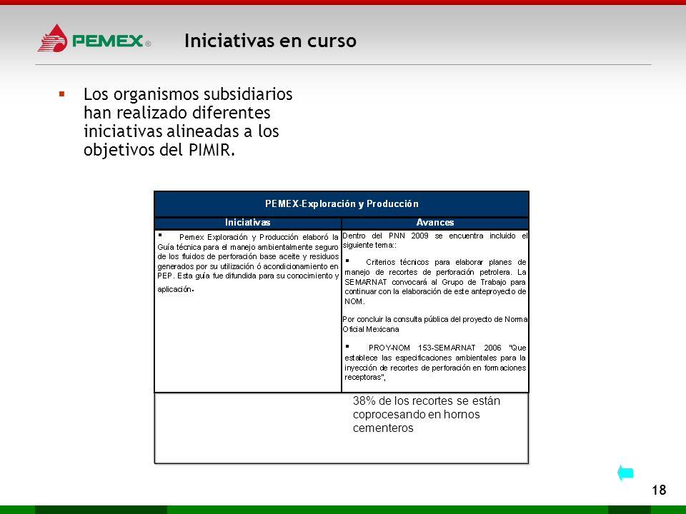 Iniciativas en curso 18 Los organismos subsidiarios han realizado diferentes iniciativas alineadas a los objetivos del PIMIR. 38% de los recortes se e