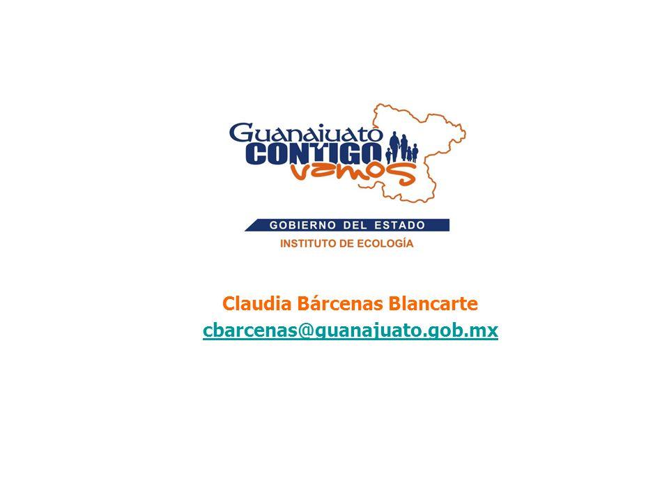Claudia Bárcenas Blancarte cbarcenas@guanajuato.gob.mx