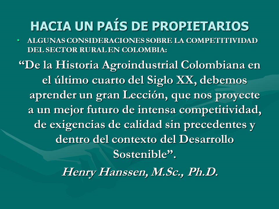 HACIA UN PAÍS DE PROPIETARIOS ALGUNAS CONSIDERACIONES SOBRE LA COMPETITIVIDAD DEL SECTOR RURAL EN COLOMBIA:ALGUNAS CONSIDERACIONES SOBRE LA COMPETITIV
