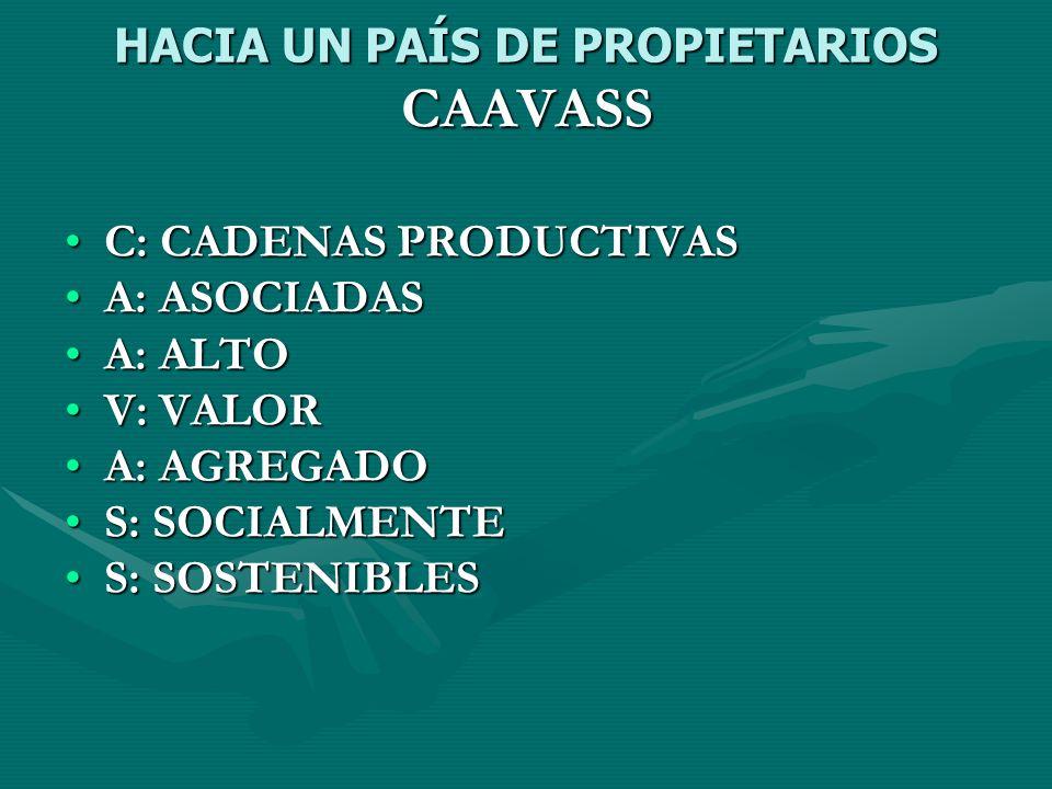 HACIA UN PAÍS DE PROPIETARIOS CAAVASS C: CADENAS PRODUCTIVASC: CADENAS PRODUCTIVAS A: ASOCIADASA: ASOCIADAS A: ALTOA: ALTO V: VALORV: VALOR A: AGREGAD