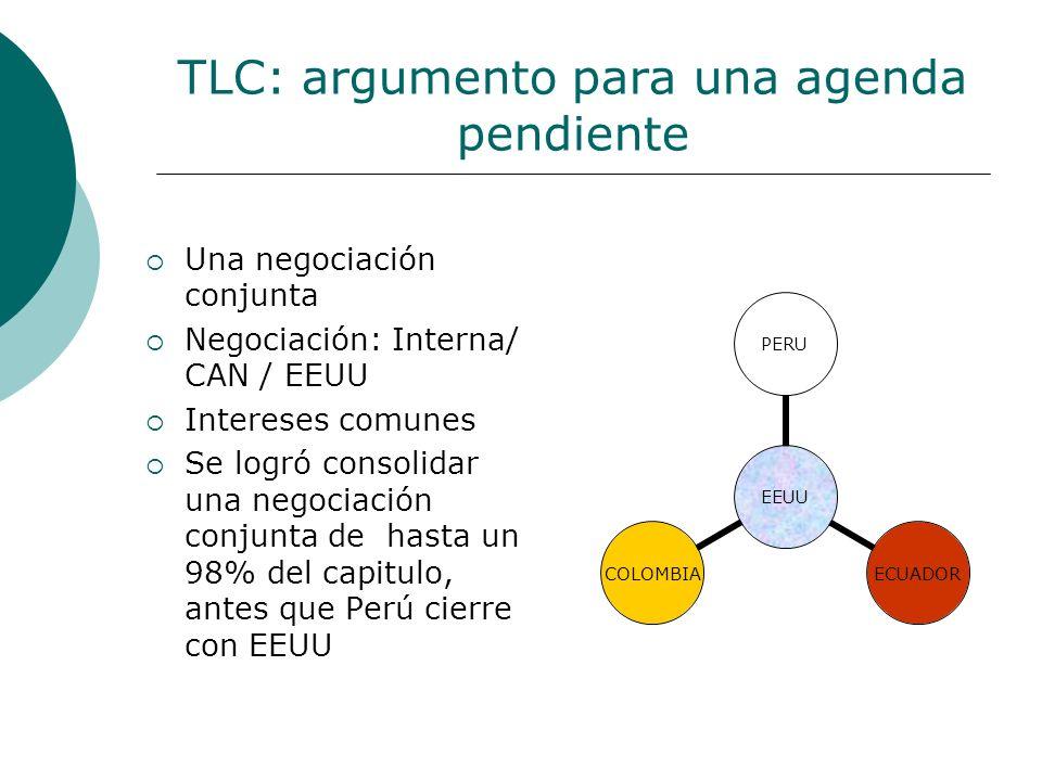 TLC: argumento para una agenda pendiente Una negociación conjunta Negociación: Interna/ CAN / EEUU Intereses comunes Se logró consolidar una negociaci