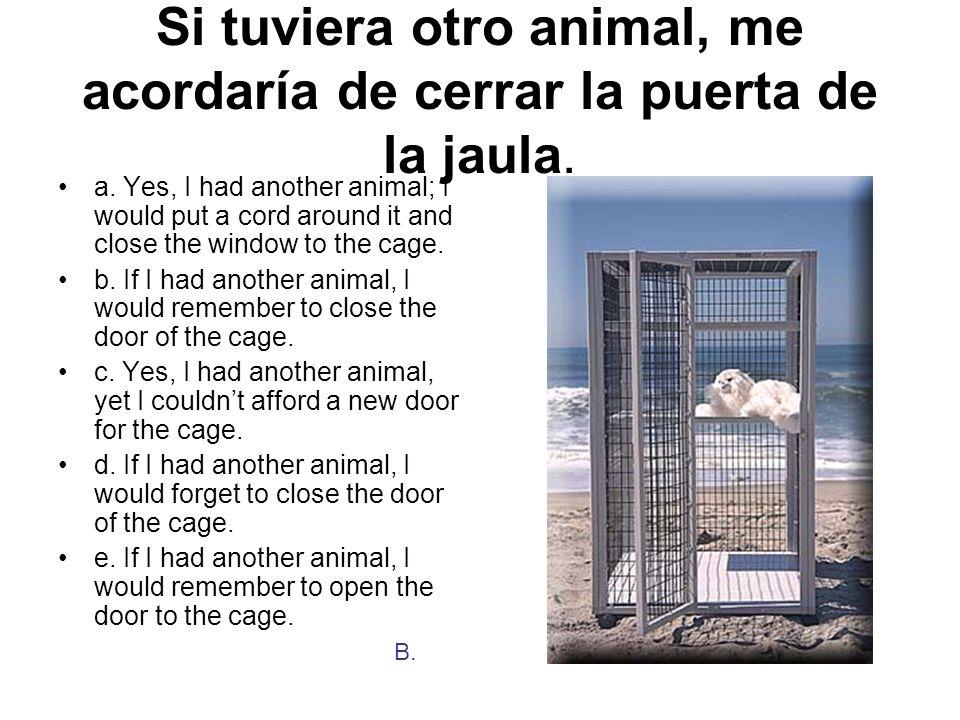 Si tuviera otro animal, me acordaría de cerrar la puerta de la jaula. a. Yes, I had another animal; I would put a cord around it and close the window