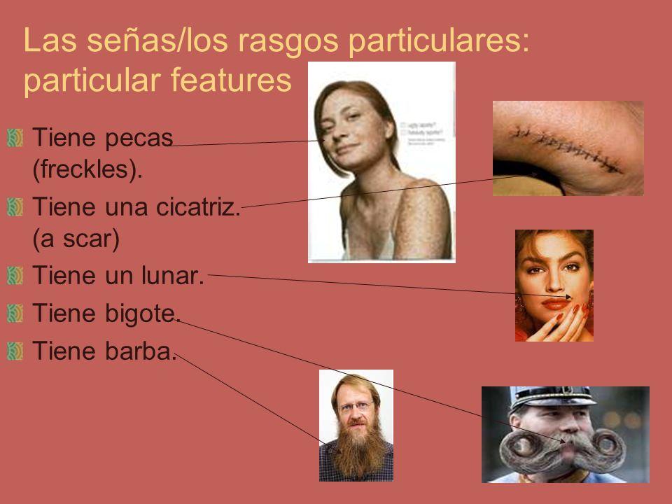 Las señas/los rasgos particulares: particular features Tiene pecas (freckles). Tiene una cicatriz. (a scar) Tiene un lunar. Tiene bigote. Tiene barba.