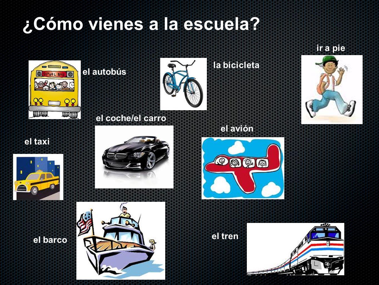 la bicicleta el avión ¿Cómo vienes a la escuela? el autobús ir a pie el coche/el carro el taxi el tren el barco