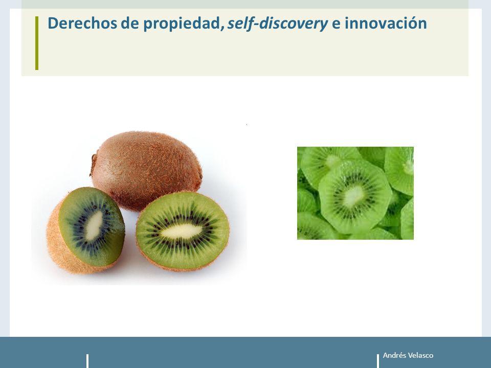 Andrés Velasco Derechos de propiedad, self-discovery e innovación