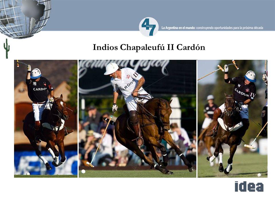 Indios Chapaleufú II Cardón