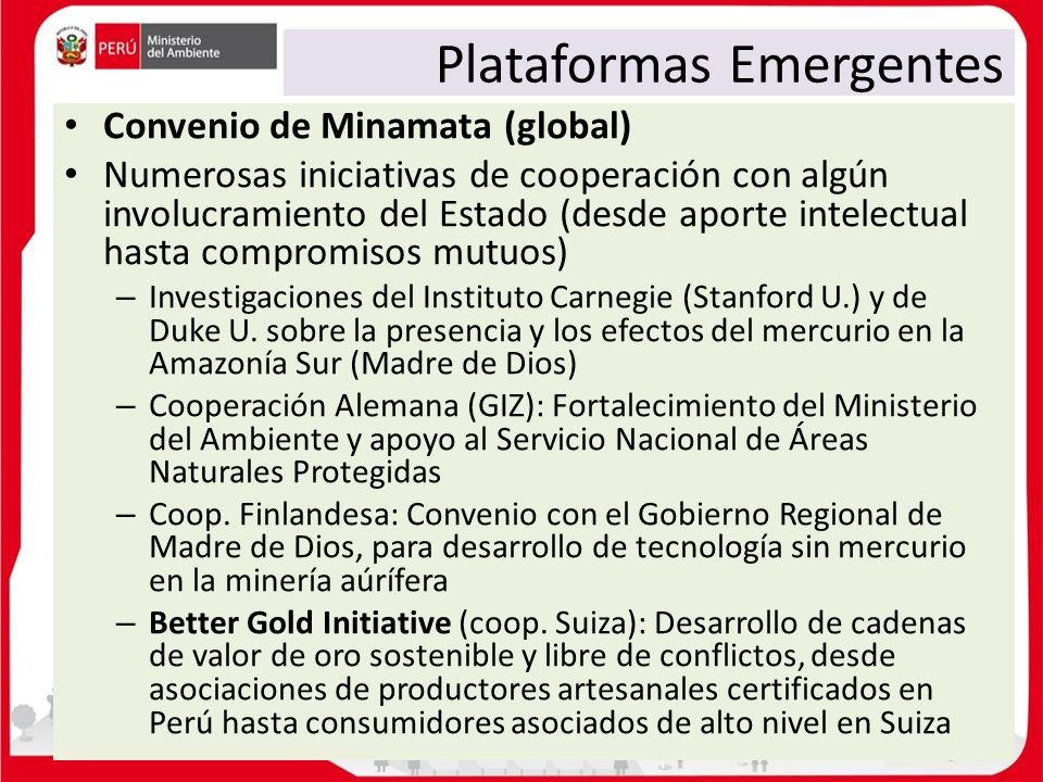 Plataformas Emergentes Convenio de Minamata (global) Numerosas iniciativas de cooperación con algún involucramiento del Estado (desde aporte intelectu
