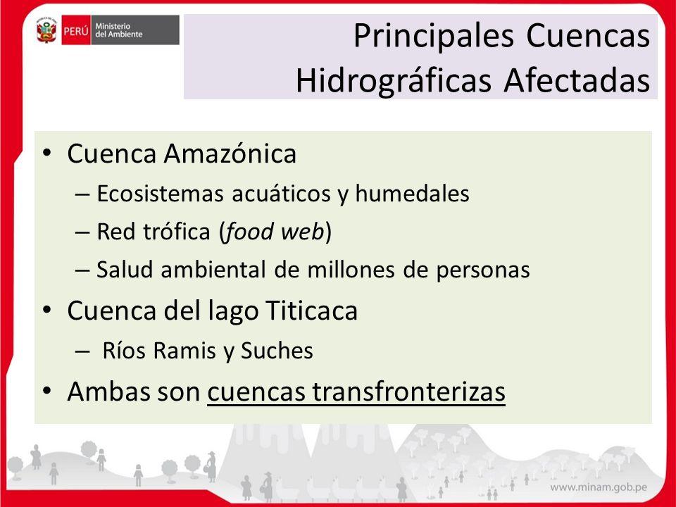 Principales Cuencas Hidrográficas Afectadas Cuenca Amazónica – Ecosistemas acuáticos y humedales – Red trófica (food web) – Salud ambiental de millone