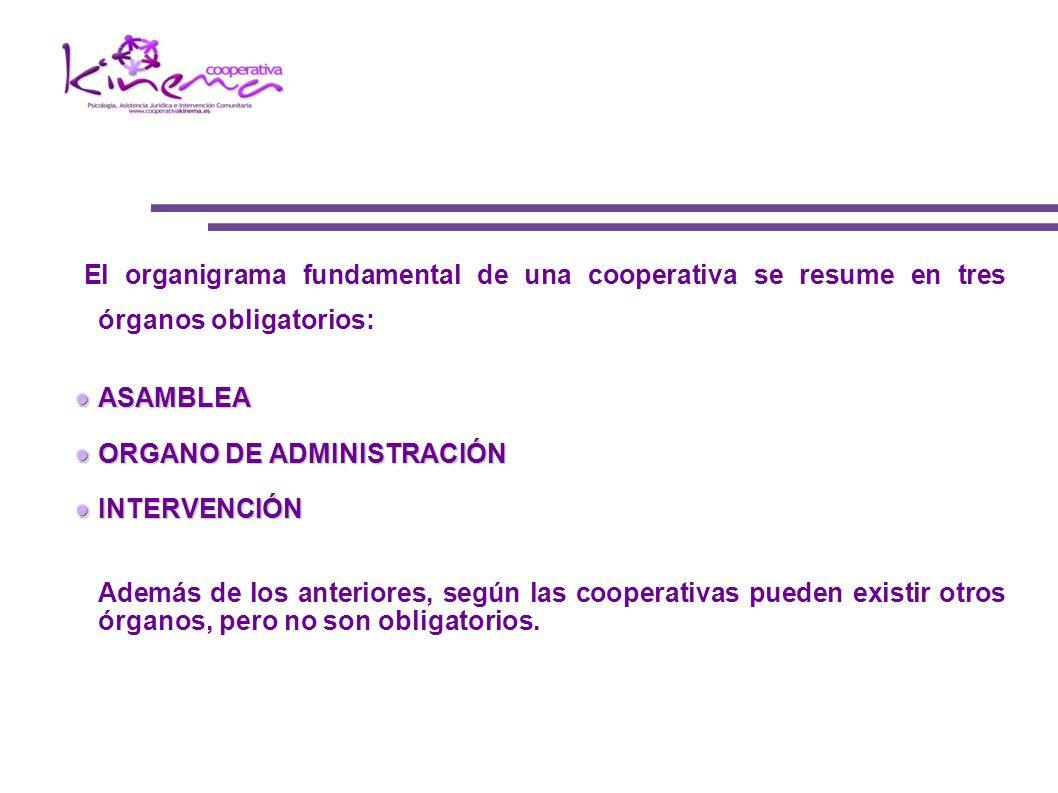 El organigrama fundamental de una cooperativa se resume en tres órganos obligatorios:ASAMBLEA ORGANO DE ADMINISTRACIÓN INTERVENCIÓN Además de los ante