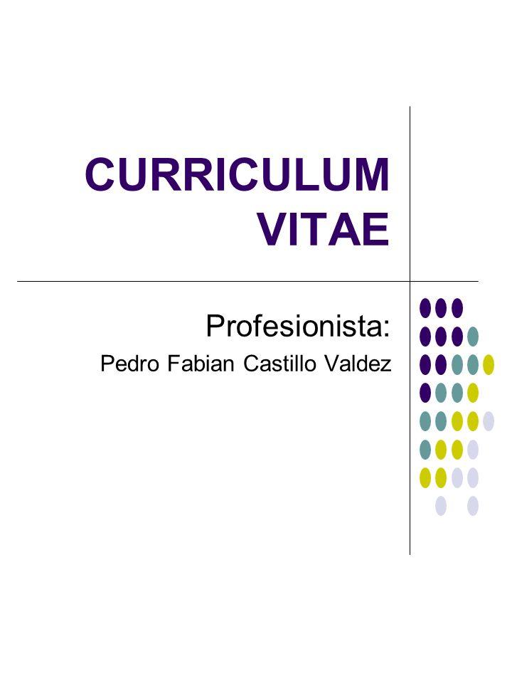 CURRICULUM VITAE Profesionista: Pedro Fabian Castillo Valdez