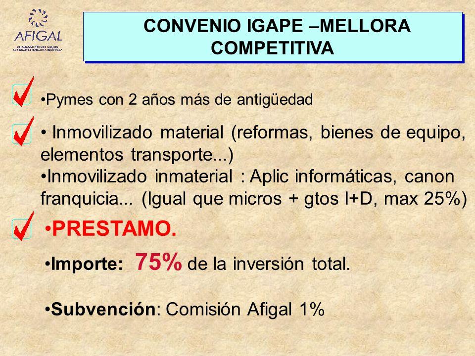 CONVENIO IGAPE –MELLORA COMPETITIVA Inmovilizado material (reformas, bienes de equipo, elementos transporte...) Inmovilizado inmaterial : Aplic inform