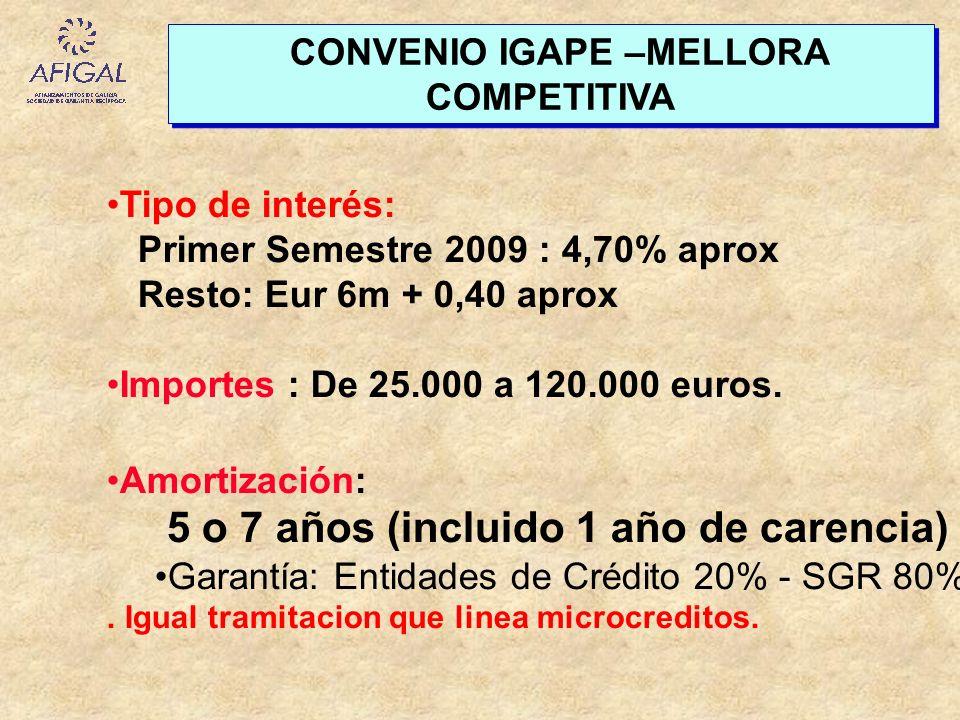 Tipo de interés: Primer Semestre 2009 : 4,70% aprox Resto: Eur 6m + 0,40 aprox Importes : De 25.000 a 120.000 euros. Amortización: 5 o 7 años (incluid