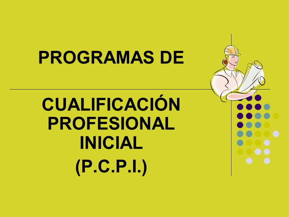 PROGRAMAS DE CUALIFICACIÓN PROFESIONAL INICIAL (P.C.P.I.)