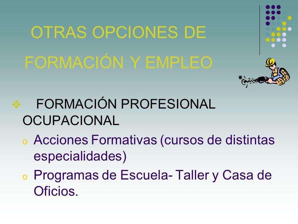 FORMACIÓN PROFESIONAL OCUPACIONAL Acciones Formativas (cursos de distintas especialidades) Programas de Escuela- Taller y Casa de Oficios. OTRAS OPCIO