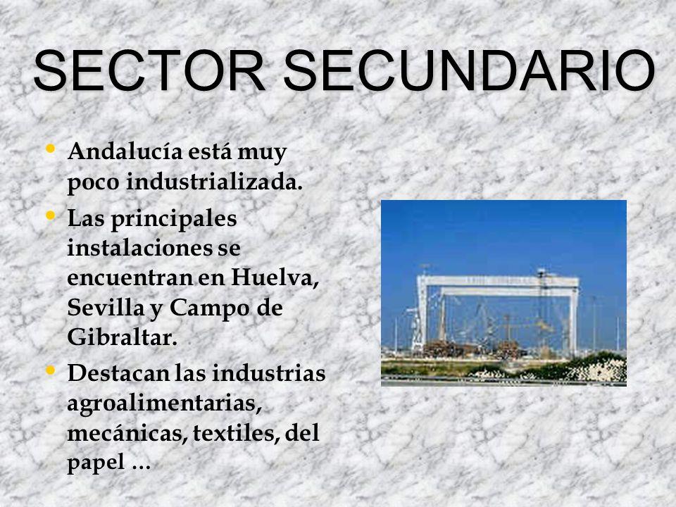 SECTOR TERCIARIO También llamado sector servicios.